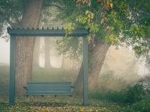 Bench Swing and Fog