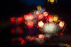 Wet Commute 5