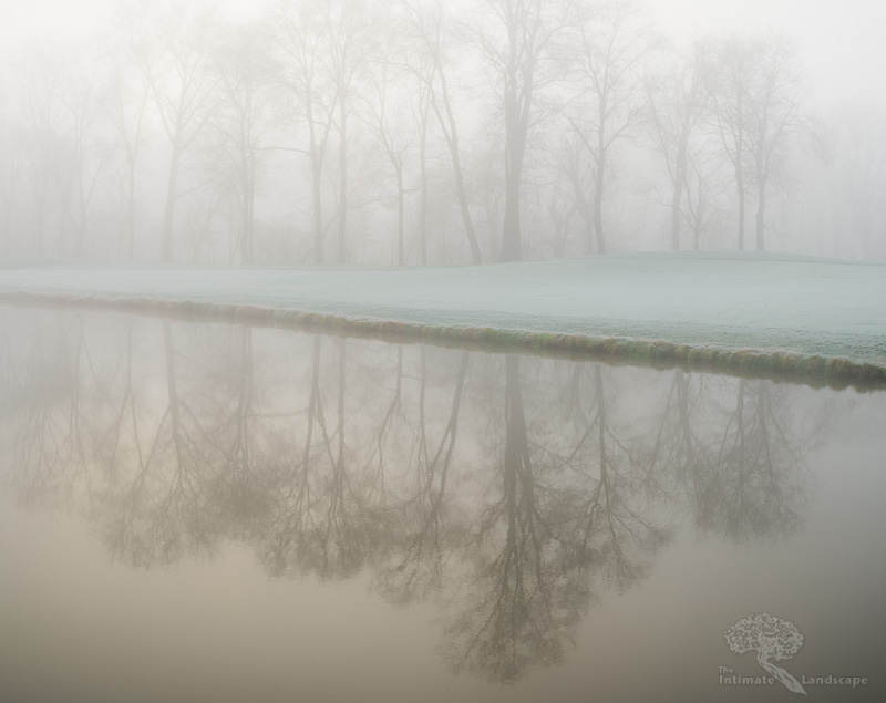 Fog-and-Frost.jpg