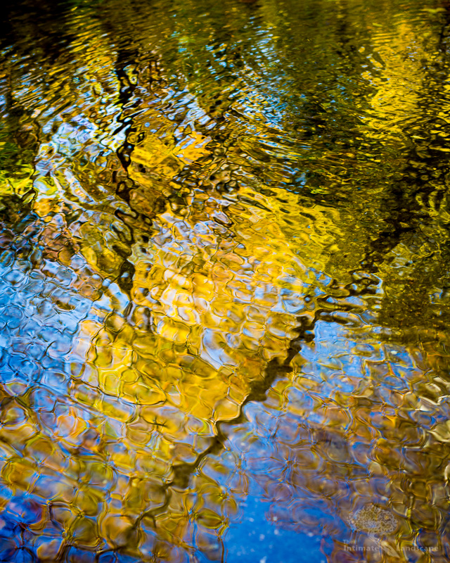 Autumn-Reflections.jpg