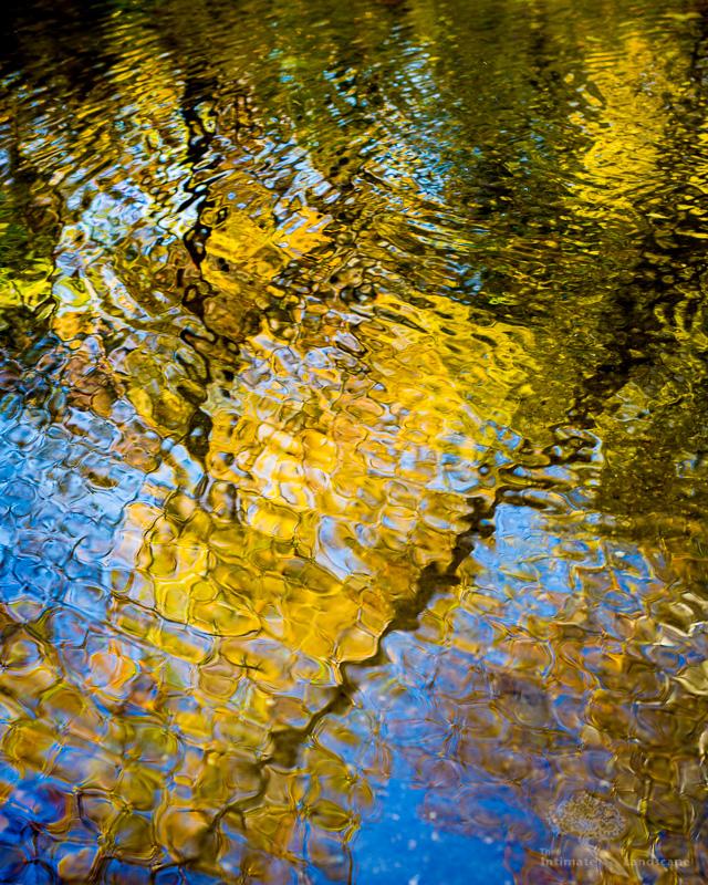 Autumn-Reflections.jpg
