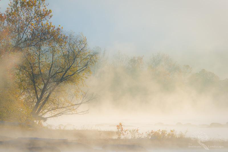 Sunrise-Mist.jpg