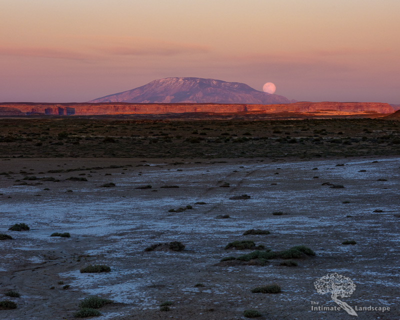 Moonrise-Over-Navajo-Mountain-1.jpg