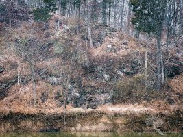 Snowfall at Goose Creek