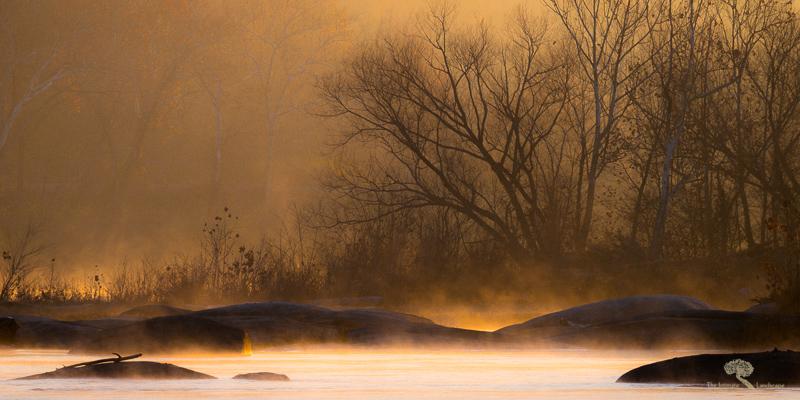 The Charisma of Fog