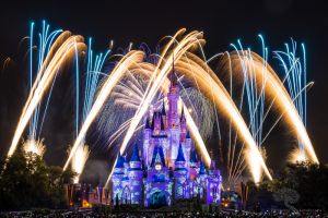 Disney World 2014 Holiday Wishes 1
