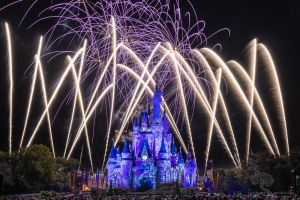 Disney World 2014 Holiday Wishes 2