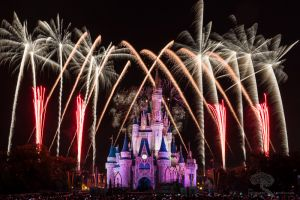 Disney World 2014 Holiday Wishes 3