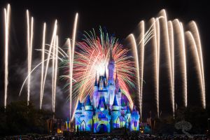 Disney World 2014 Holiday Wishes 4