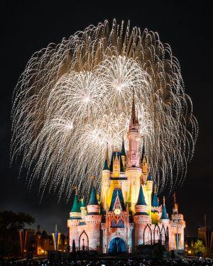 Disney World 2014 Holiday Wishes 5