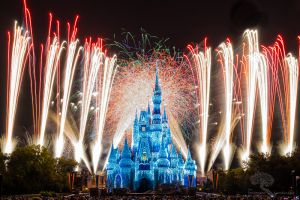 Disney World 2014 Holiday Wishes 7